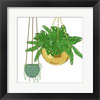 Hanging Plant Set Framed Print