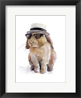 Modern Bunny IV Framed Print