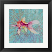 Fish On Coral II Framed Print