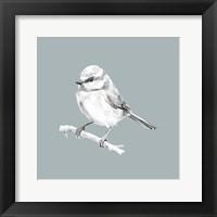 Bird Study on Blue II Framed Print
