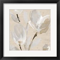 Framed Neutral Tulips II