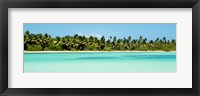 Framed Tropical Pardise