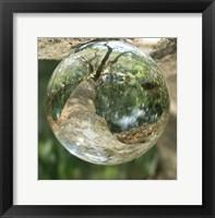 Framed Nature Droplets