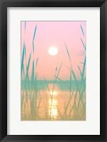 Framed Fresh Sunset Views