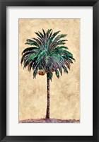 Framed Coconut Tribal Palm I