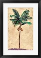 Framed Coconut Tribal Palm II