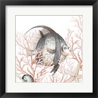 Ocean Fish On Coral Framed Print