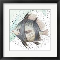Framed Coastal Fish I