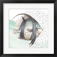 Framed Coastal Fish II