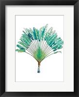 Framed Travelers Palm