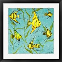 Framed School Of Fish IV