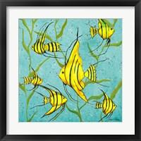 School Of Fish III Framed Print