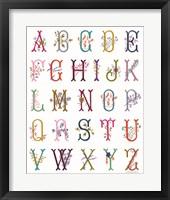 Framed In the Garden Alphabet