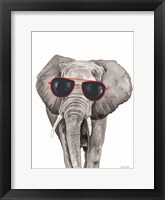 Framed Looking Cool Elephant