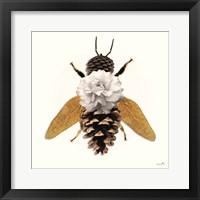 Framed Forest Bee