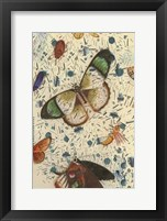 Framed Confetti with Butterflies IV