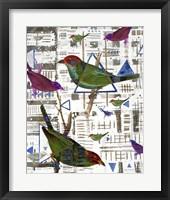 Framed Bird Intersection II