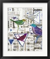 Framed Bird Intersection III