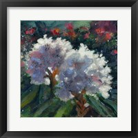 Framed Rhododendron Portrait I