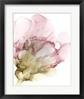 Flowering Pink II Framed Print
