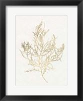 Framed Gilded Algae III