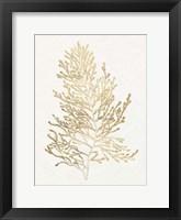 Framed Gilded Algae IV