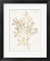 Framed Gilded Algae VII