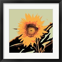 Pop Art Sunflower II Framed Print