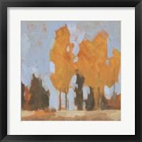 Golden Seasons I Framed Print
