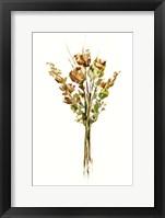 Autumn Roses I Framed Print