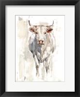 Sunlit Cows II Framed Print
