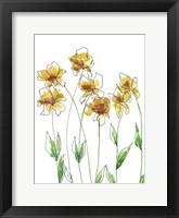 Amber Tulips I Framed Print