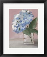 Single Hydrangea I Framed Print