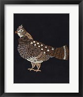 Forest Dweller VI Framed Print