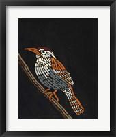 Forest Dweller VIII Framed Print