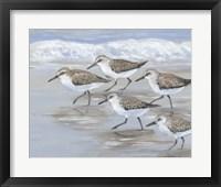Sandpipers I Framed Print