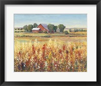 Framed Country View I