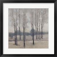 Soft Light I Framed Print