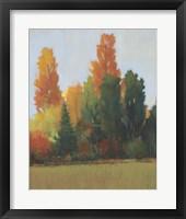 Fall Colors I Framed Print