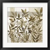 Neutral Garden II Framed Print