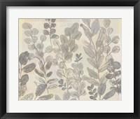 Leaf Pattern II Framed Print