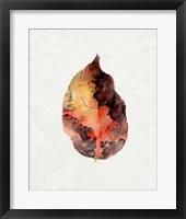 Watercolor Autumn Leaf I Framed Print