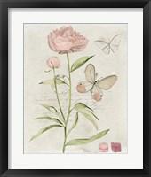 Field Notes Florals II Framed Print