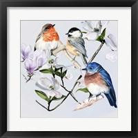 Four Little Birds I Framed Print