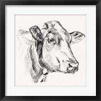 Holstein Portrait Sketch I Framed Print