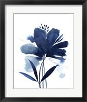 Blazing Bloom II Framed Print