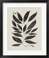 Branched Composition I Framed Print