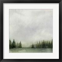 Timberline II Framed Print