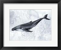 Framed Deep Diver II
