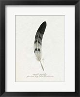 Found Feather I Framed Print